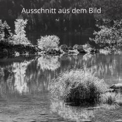 Schilf und Braxeninsel im Eibsee