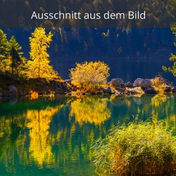 Goldener Herbst am Eibsee - Braxeninsel