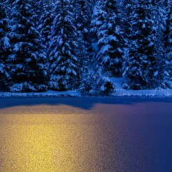 Zugefrorener See, Spiegelung Mondlicht
