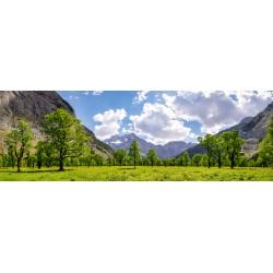 Großer Ahornboden - im Sommer (Engalm)