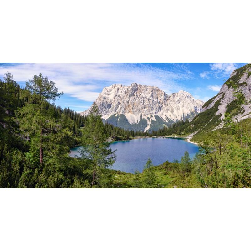 Seebensee - Waldblick
