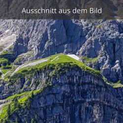 Felswand mit Gamswiesen