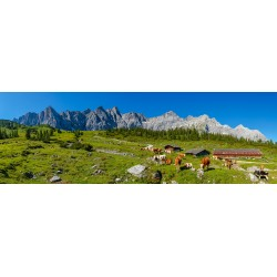 Ladizalm - Alm im Karwendel