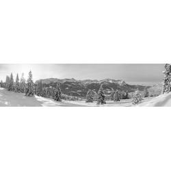 Winterwald Garmisch-Partenkirchen schwarz-weiß