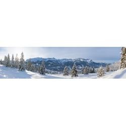 Winterwald Garmisch-Partenkirchen mit Wettersteingebirge