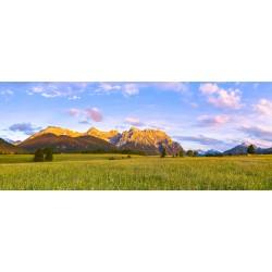 Alpenglühen auf den Buckelwiesen