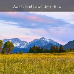 Blumenwiese Abendrot Alpenglühen