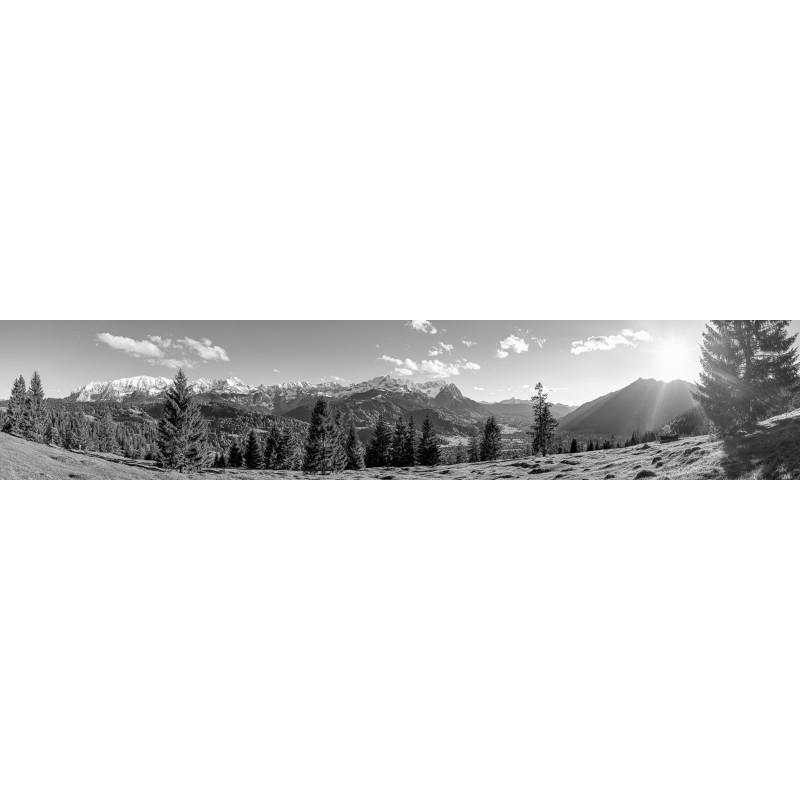 Bergwald - Garmisch-Partenkirchen - schwarz weiß