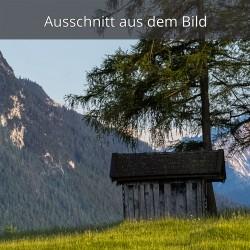 Wiesmahd Hütte Mittenwald