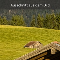 Stadel Buckelwiesen