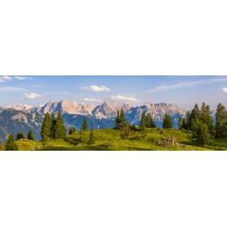 Almwiese - Karwendelblick