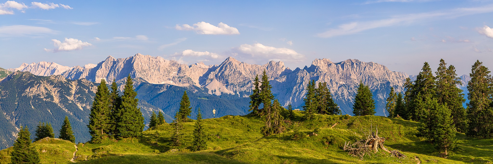 Goldene Stunde auf der Almwiese mit einzeln stehenden Bäumen. Blick auf das Karwendelgebirge mit Hoher Wörner, Tifkarspitze, Westliche Karwendelspitze, Viererspitze und Linderspitze