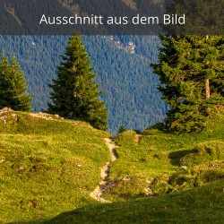Wanderweg Wallgauer Alm