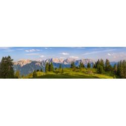Almwiese - Karwendel und Soierngebirge Bergpanorama
