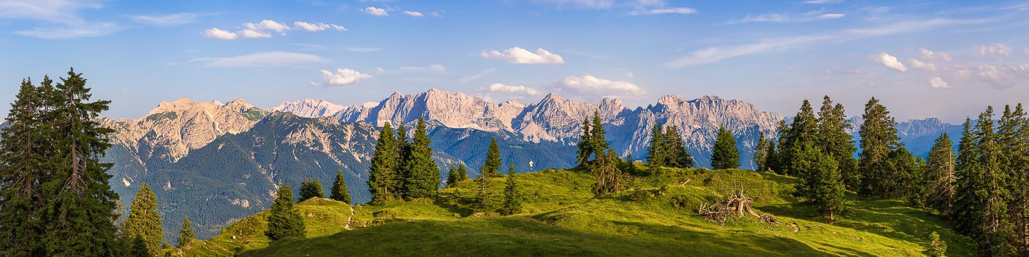 Abendlicht auf der Almwiese (Wallgauer Alm) mit einzeln stehenden Bäumen. Blick auf das Soierngebirge mit Soiernspitze, Schöttelkarspitze, Seinskopf,Signalkopf und Lausberg.