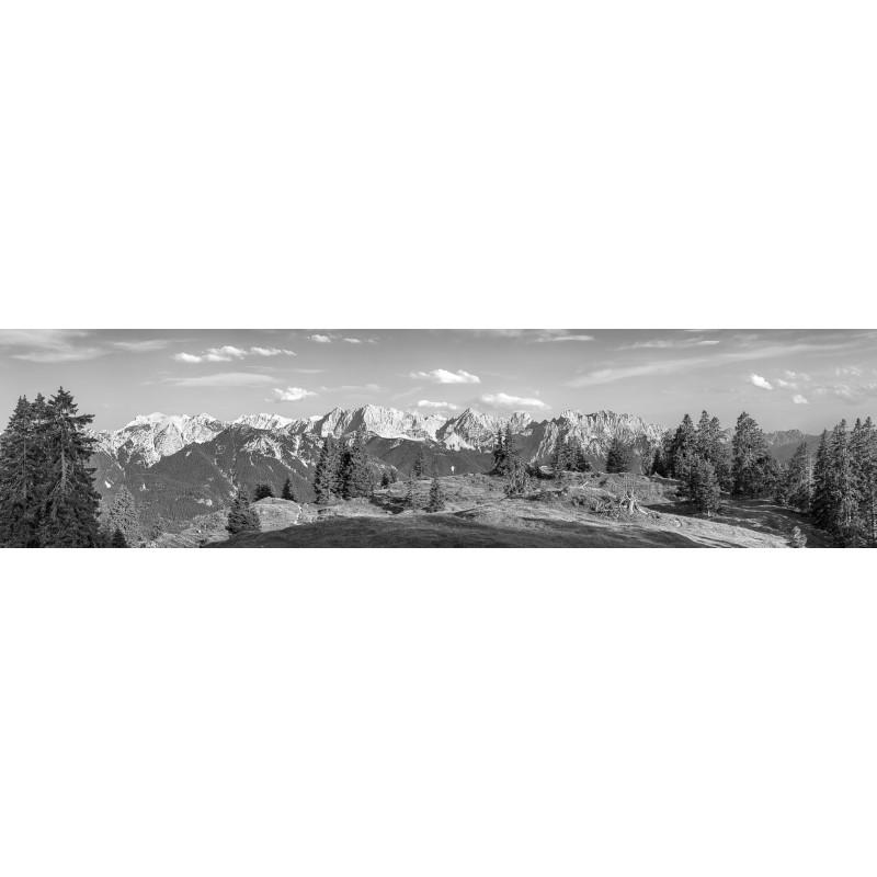 Almwiese - Karwendel und Soierngebirge Bergpanorama - schwarz weiß
