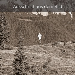 Bergkreuz - Almwiese
