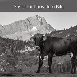 Zugspitze und Kalb