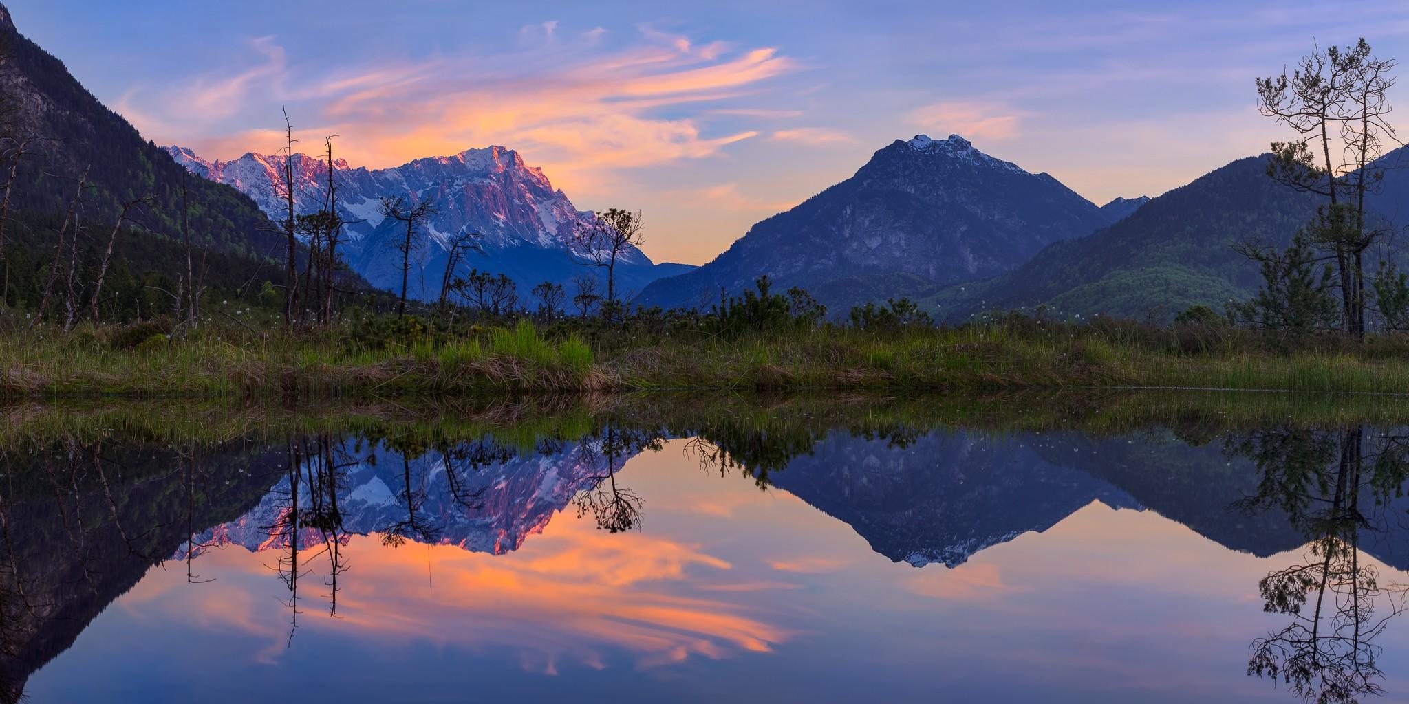Zugspitzblick - Garmisch-Partenkirchen. Abendrot im Frühjahr, die ersten Gräser im Moos werden grün und auf den Bergen reflektiert der Schnee das Abendrot.