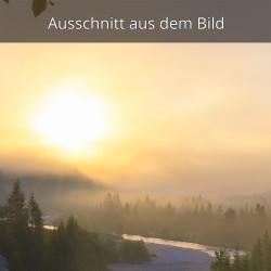Sonnenaufgang im Morgennebel an der Isar