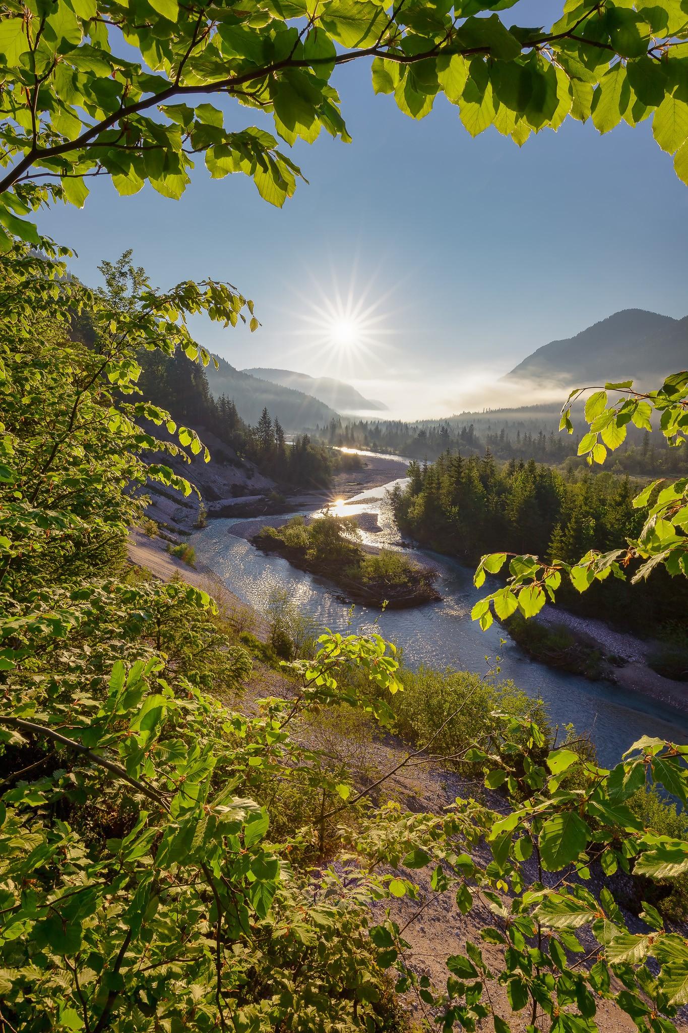 Die Sonne erstrahlt die Isar zwischen Wallgau und Vorderriß. An der Böschung wachsen frische Buchenblätter, die dem Bild einen schönen Rahmen geben. Sonnenaufgang pur!