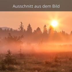 Sonnenaufgang Morgennebel
