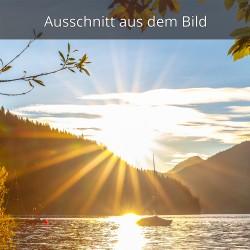 Sonnenstern am Walchensee
