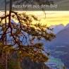 Mittenwald und Arnspitzen