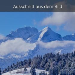 Elmauer Alm  und Alpspitze