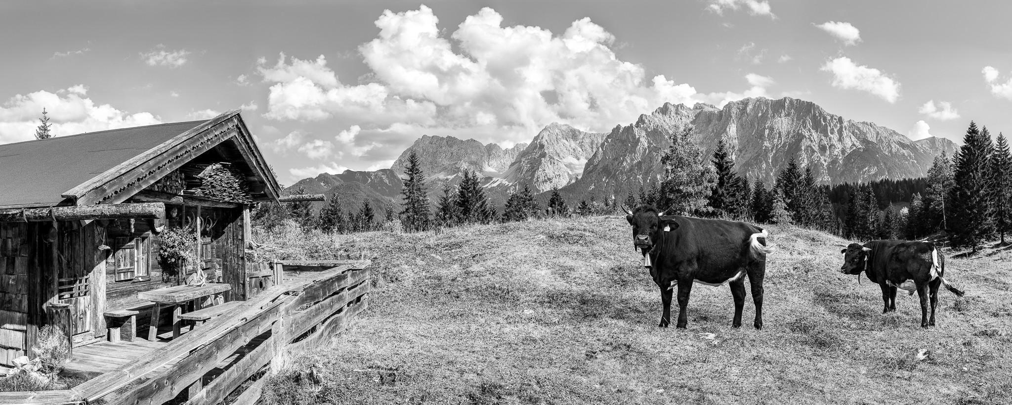 urige Alm in der Alpenwelt Karwendel