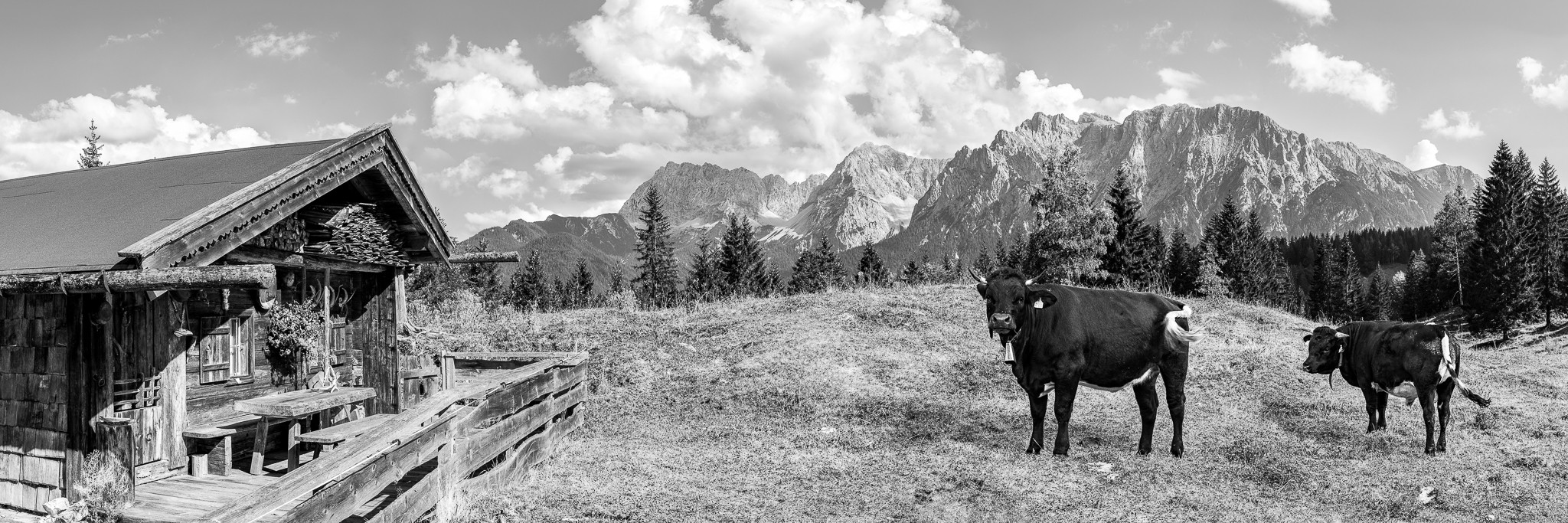 Alm mit Karwendelblick - Mittenwald Bergpanorama