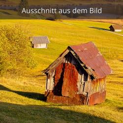 alte Wiesmahdhütte