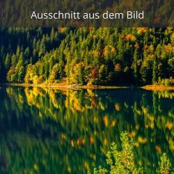 Herbstwald Spiegelung im Eibsee