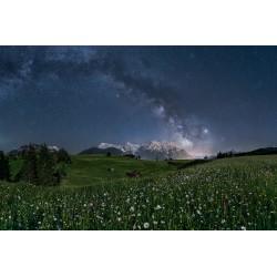 Sternenhimmel über dem Karwendel - Blumenwiese im Mondlicht