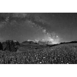 Sternenhimmel über dem Karwendel - Blumenwiese im Mondlicht - schwarz weiß