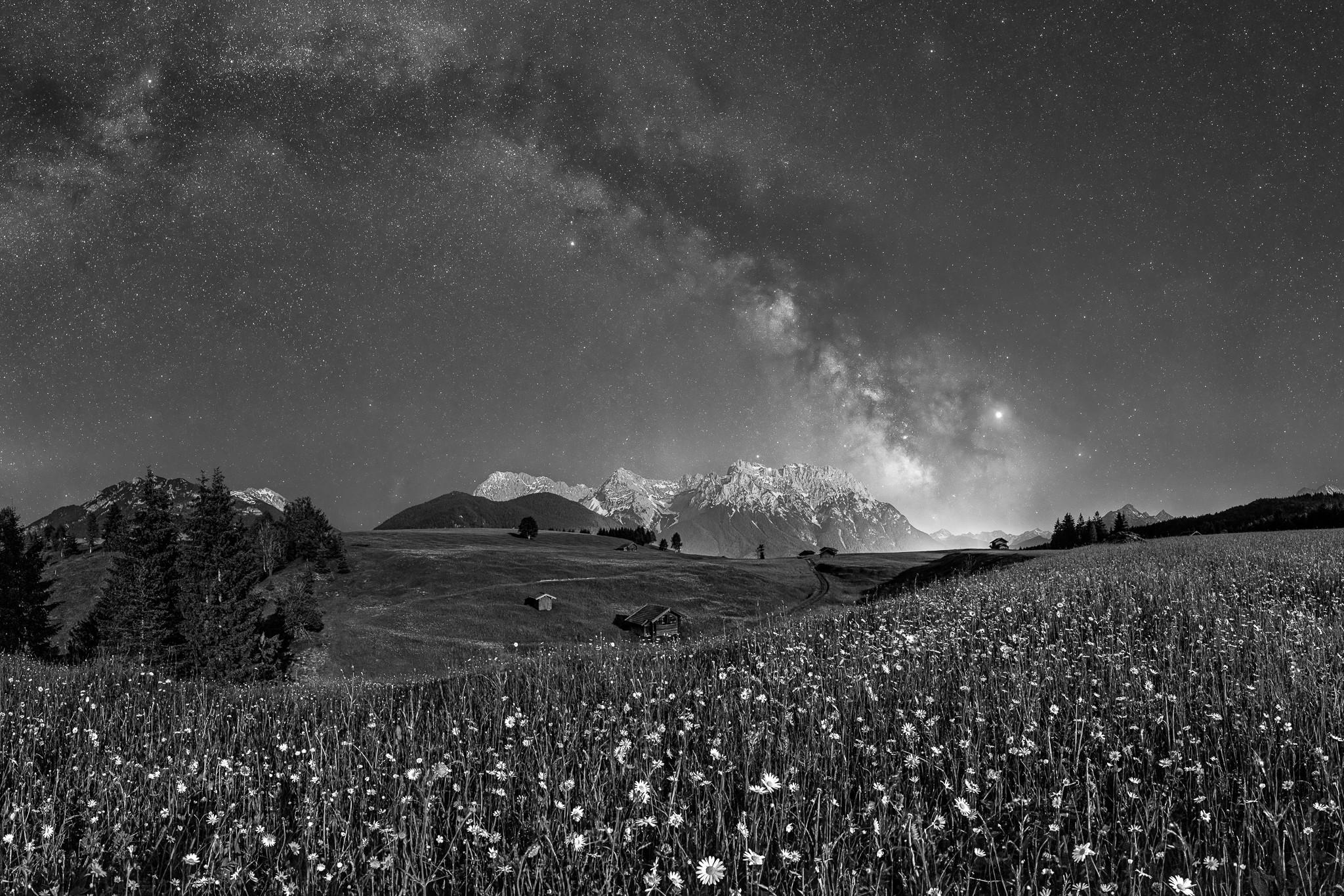 Schwarz-Weiß - Sommerwiese auf den Buckelwiesen bei Mittenwald bei Nacht. Der untergehende Mond leuchtet noch die Blumenwiese und die Berge an.