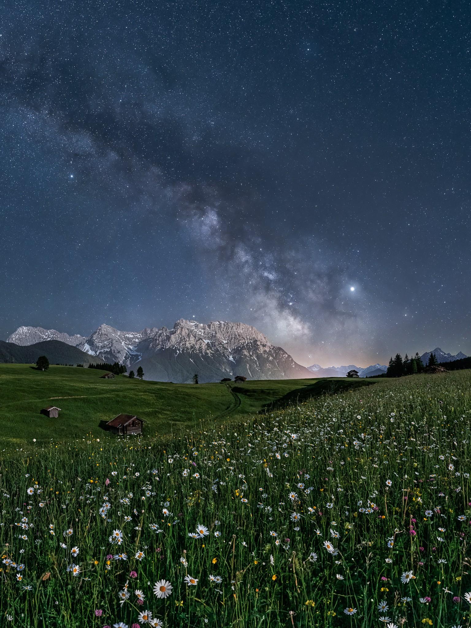 Sternenhimmel mit Margeriten - Karwendel