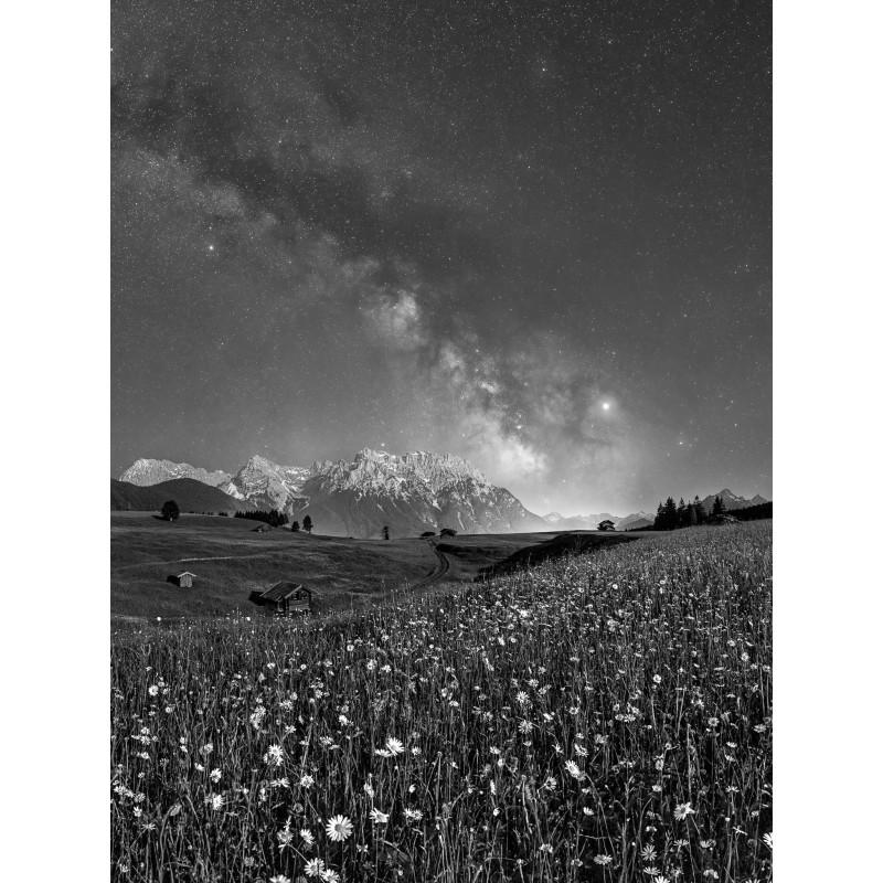 Sternenhimmel mit Margeriten - Karwendel - schwarz weiß
