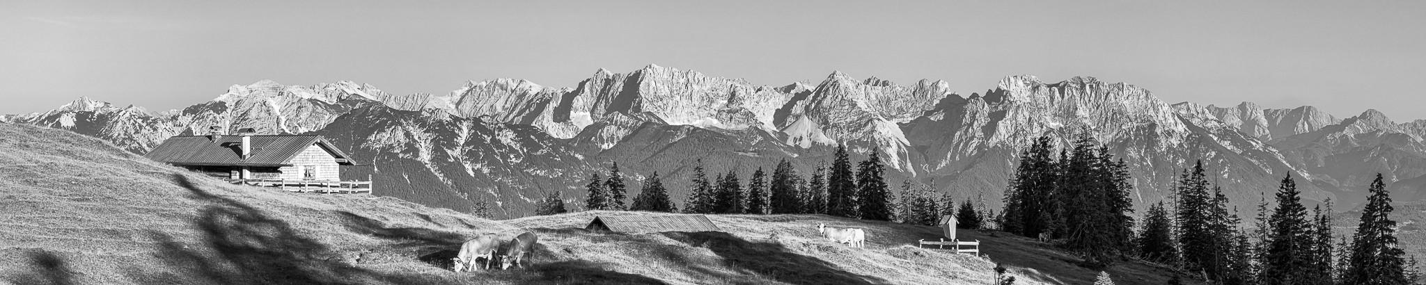 Blick ins Karwendel - Almwiese Krüner Alm - schwarz weiß