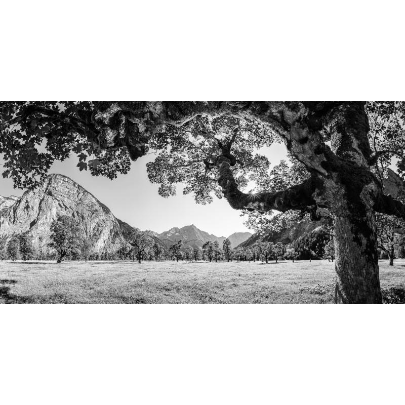 Sommer am Großer Ahornboden - Engalm - schwarz weiß