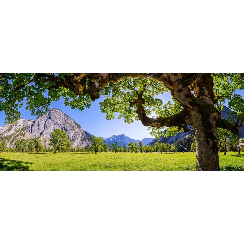 Großer Ahornboden - Naturpark Karwendel